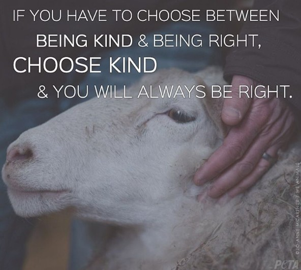 If you have to choose between being kind and being right, choose kind