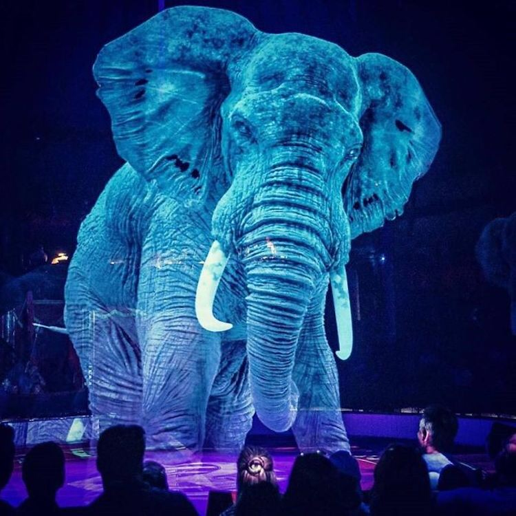 Circus in Germany Goes Cruelty-Free by Replacing Real Animals with Holographs